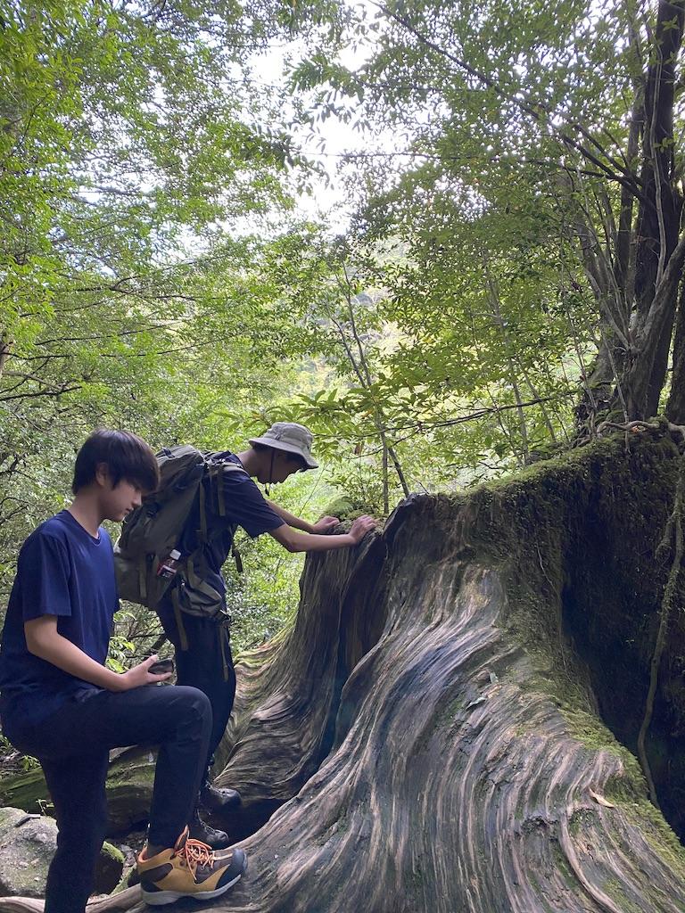https://www.sayuri-sense.jp/wp-content/uploads/2021/09/UNADJUSTEDNONRAW_thumb_977e.jpg